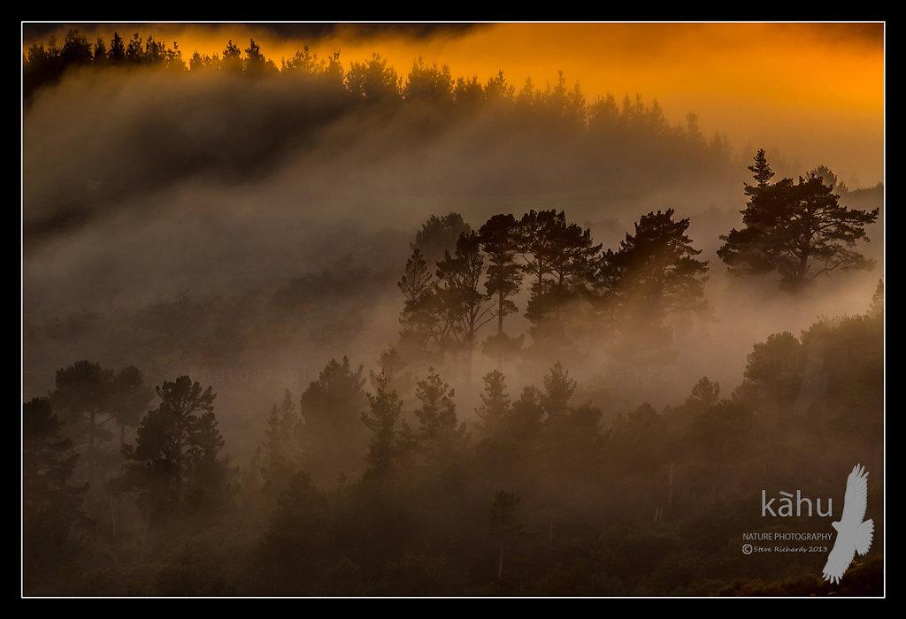Sunrise at Kaitoke north of Upper Hutt   SS9
