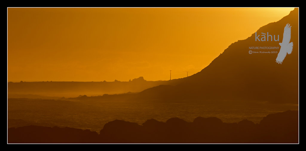 Mangatoetoe on evening, Cape Palliser   SL1