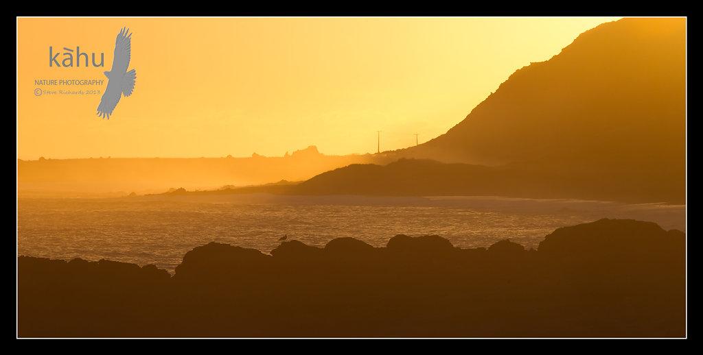 Mangatoetoe on evening, Cape Palliser   SL2