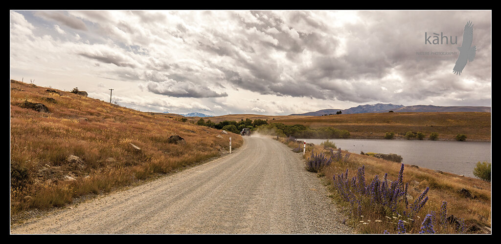Road past Lake MacGregor, near Tekapo   -  L7