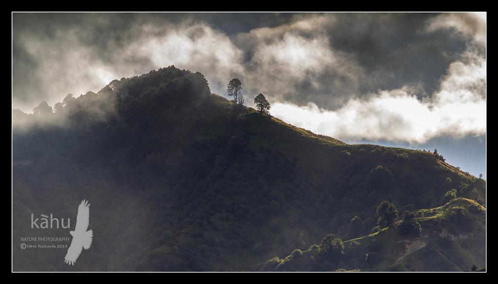 Misty hills, Ruahines  - L14