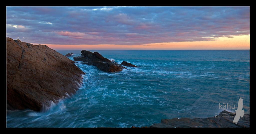 Mangatoetoe, Palliser Bay   L46