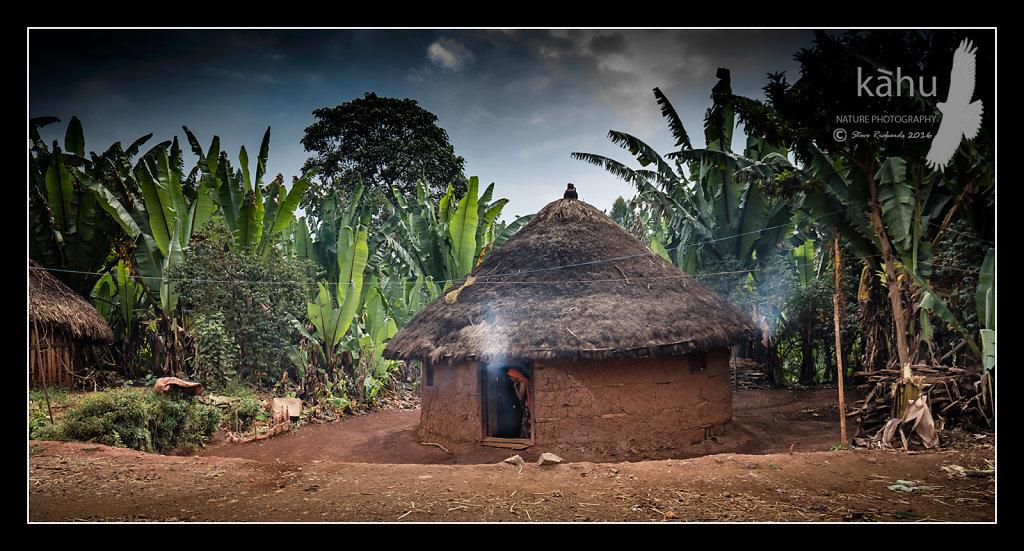 hut-banana-plantation.jpg