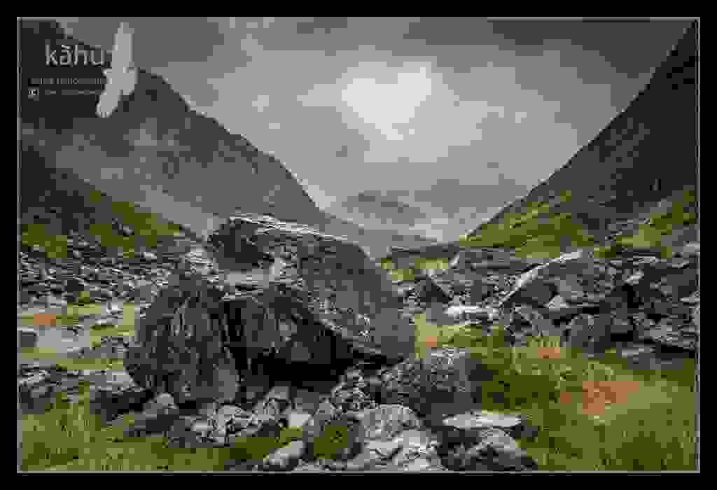 Otira Valley, Rock Wren habitat