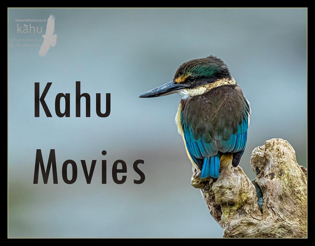 KAHU MOVIES
